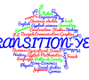 Transition Year - Information